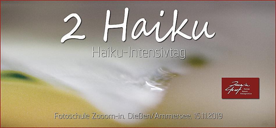 19-2-Zooom-inHaiku2017.jpg